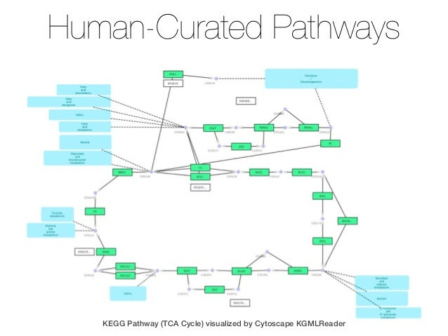 kegg pathway analysis tutorial
