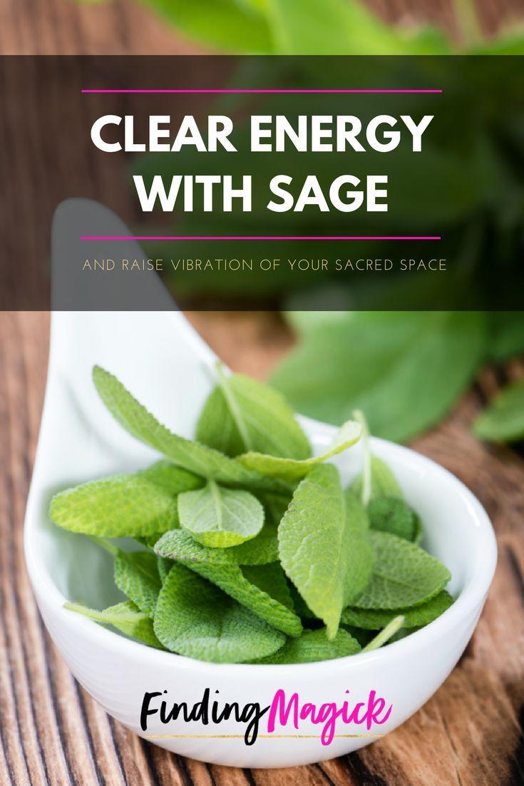 sage tutorial for beginners