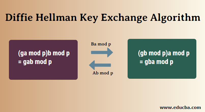diffie hellman key exchange tutorial