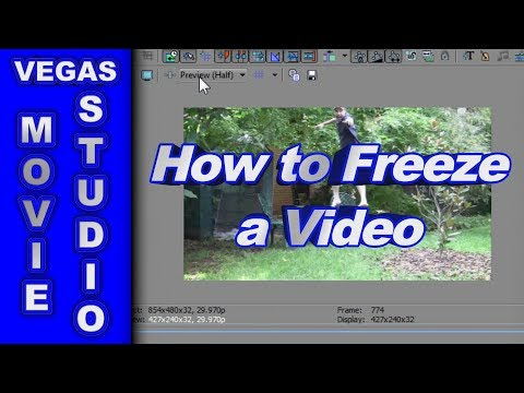 sony vegas pro 13 tutorial for beginners pdf