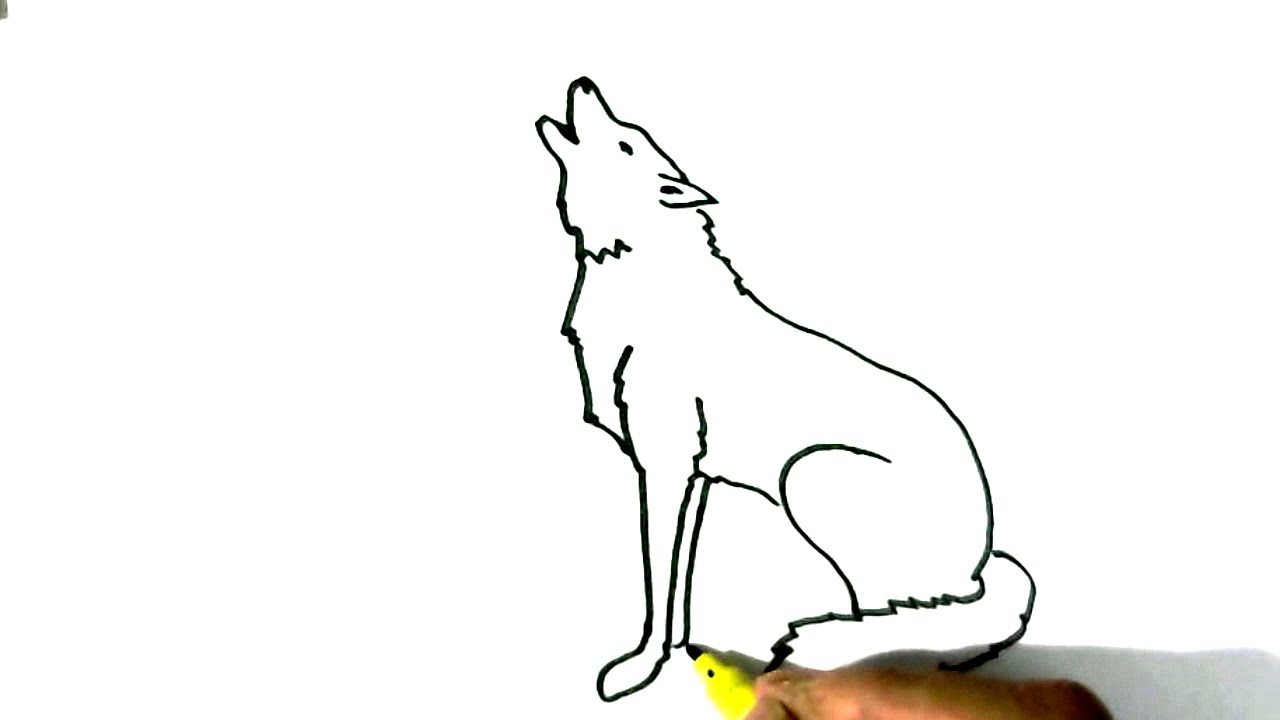 howling wolf drawing tutorial
