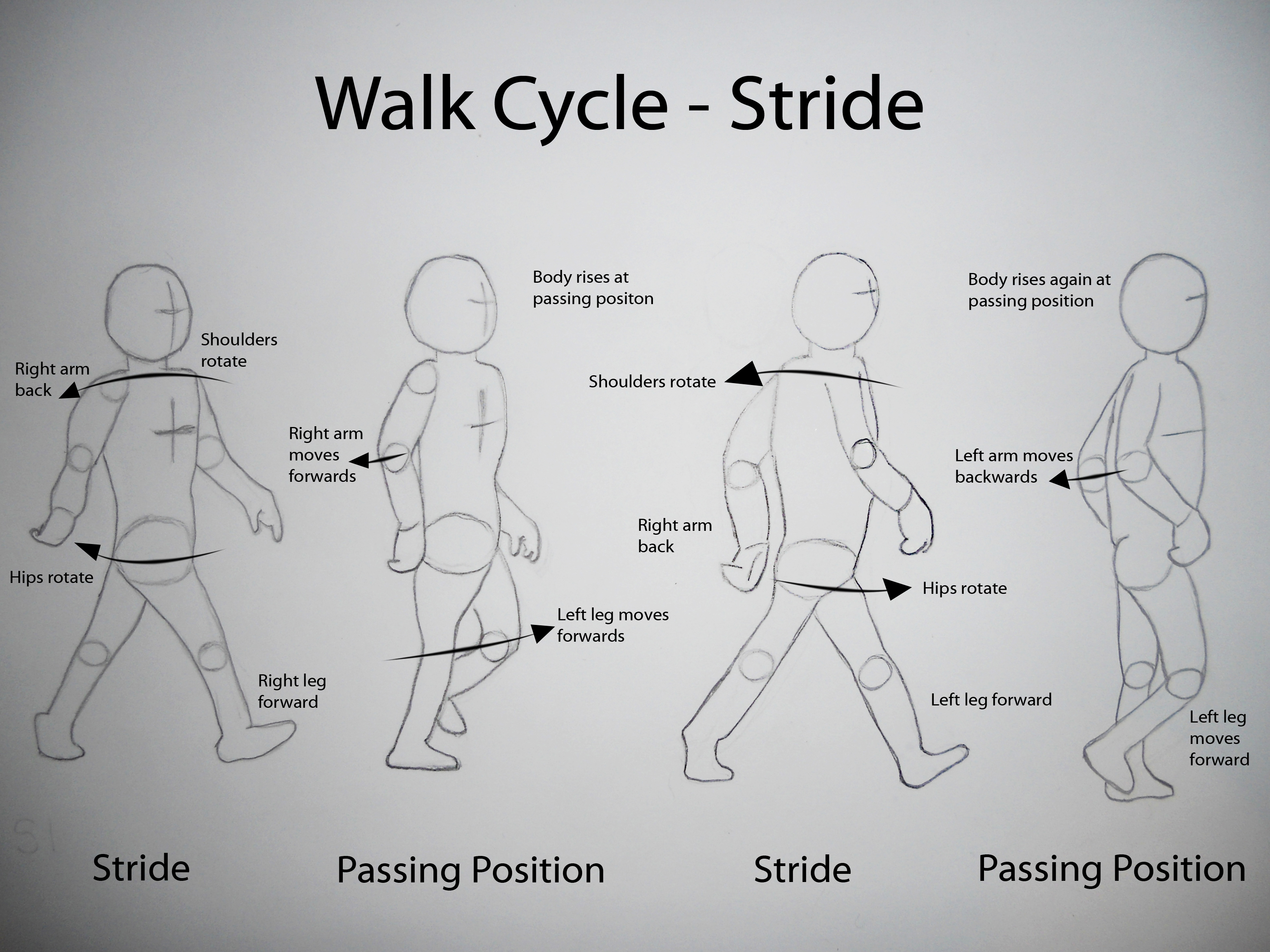 walk cycle animation tutorial