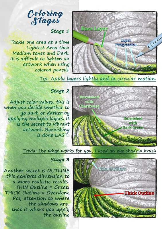 web 2.0 tutorial pdf