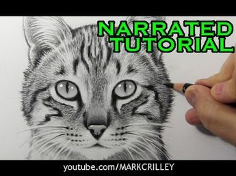 realistic face drawing tutorial