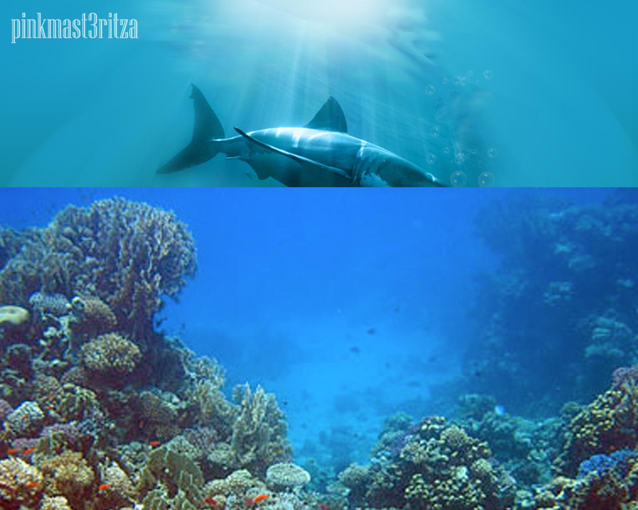 underwater scene photoshop tutorial
