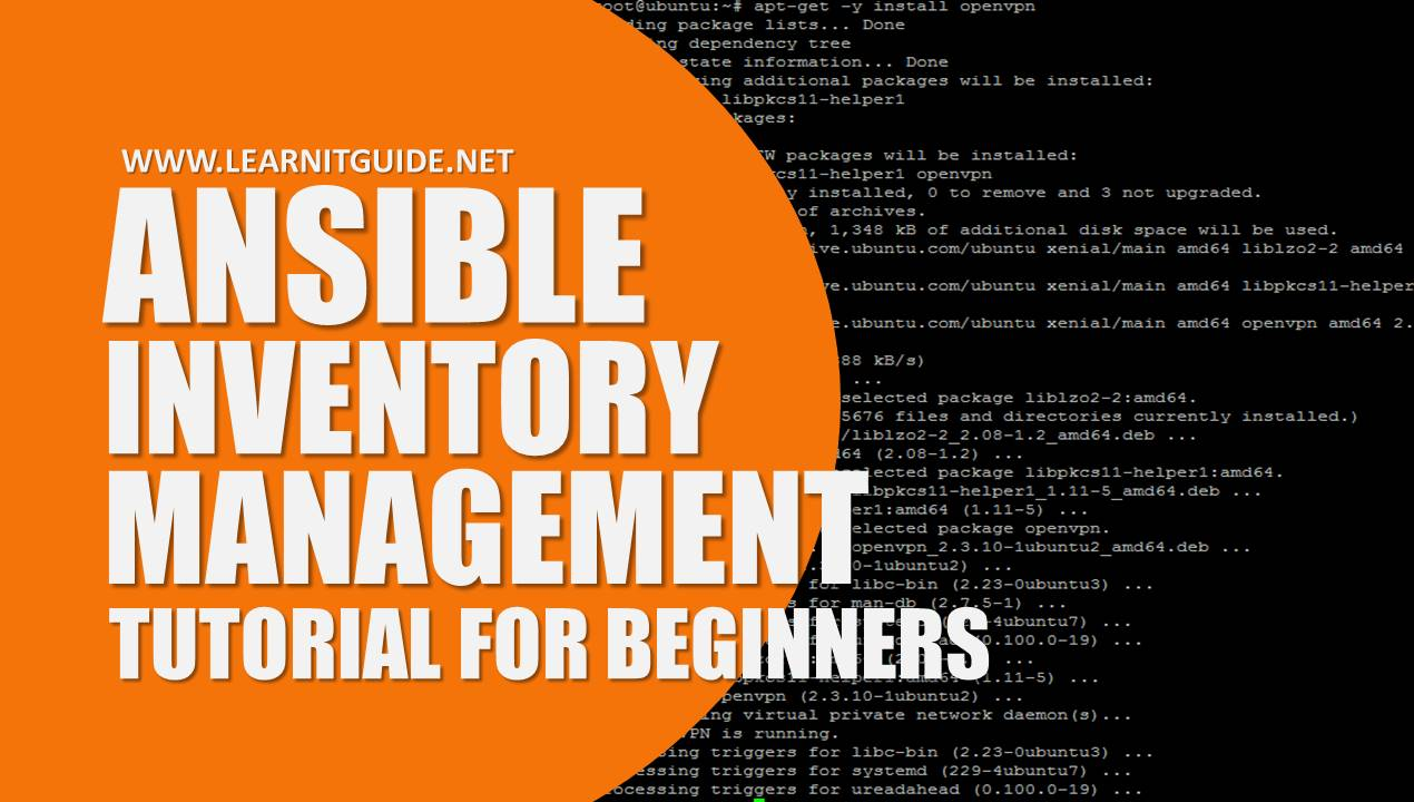 net tutorial for beginners