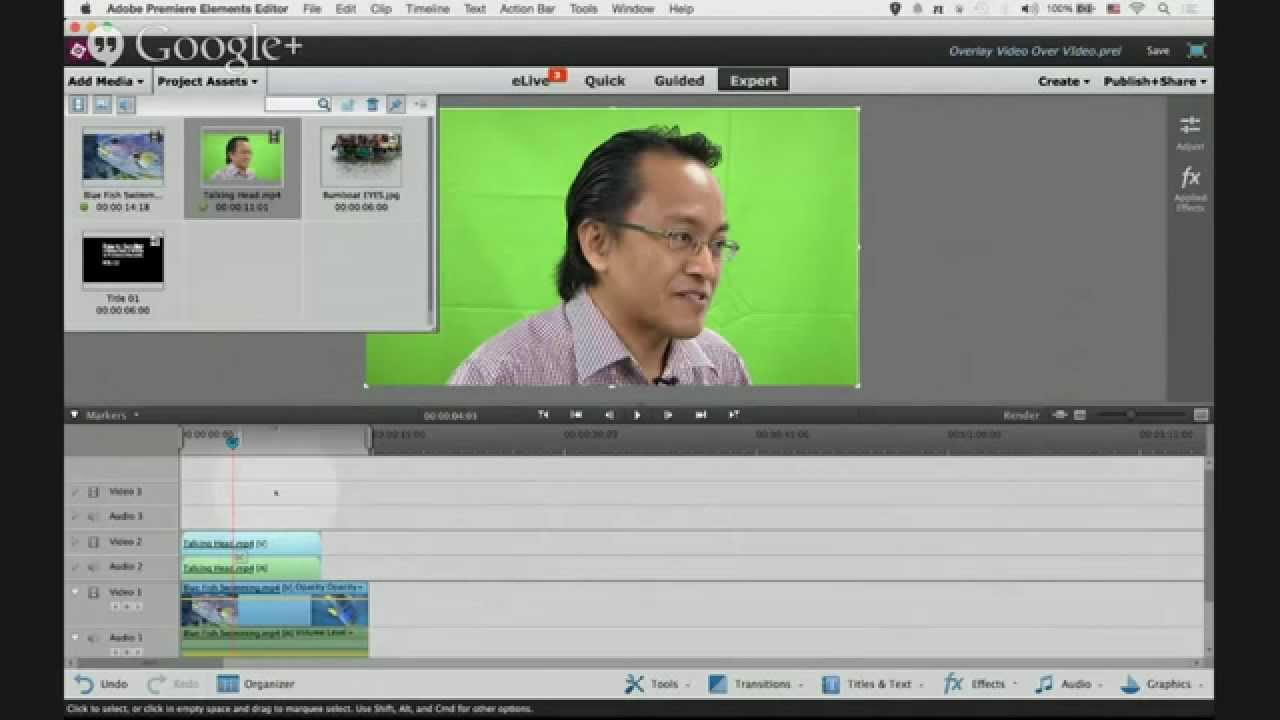adobe premiere elements 13 tutorial