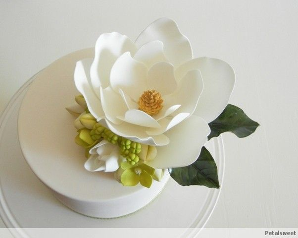 magnolia sugar flower tutorial