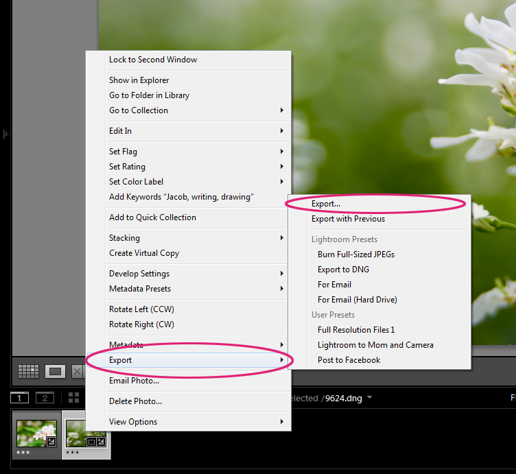 photoshop lightroom 5 tutorial