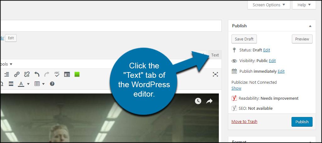 wordpress text editor tutorial