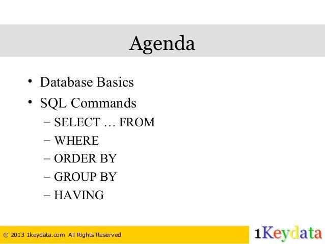 sql database basics tutorial