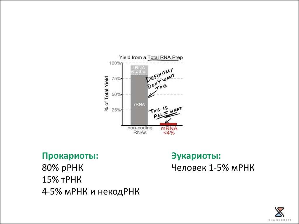 chip seq analysis tutorial