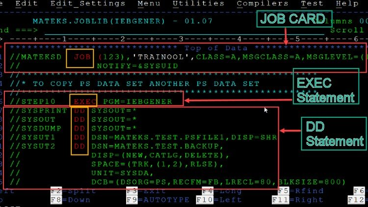 cobol programming tutorial for beginners