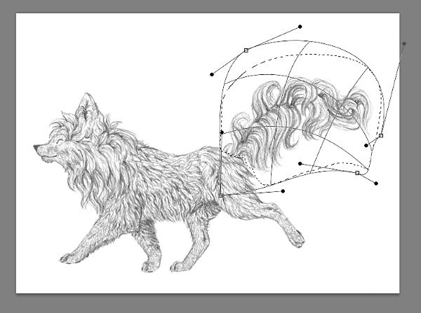 drawing in photoshop tutorial beginner