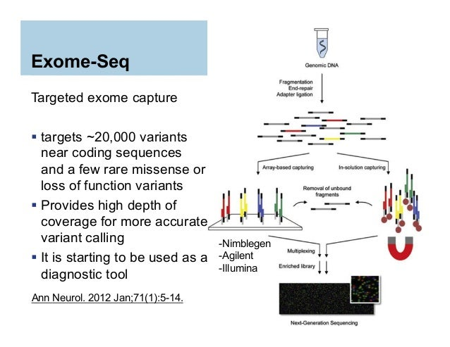 exome sequencing analysis tutorial
