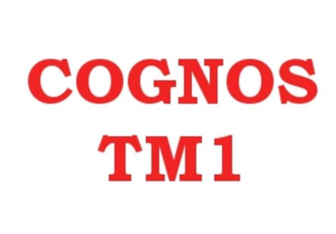 cognos tm1 tutorial for beginners