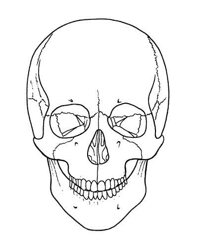 mexican sugar skull makeup tutorial