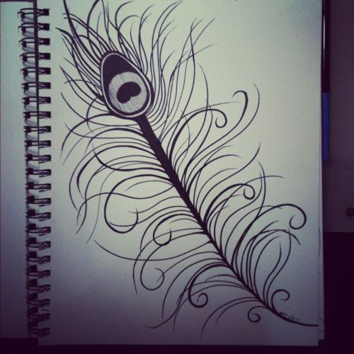peacock feather drawing tutorial
