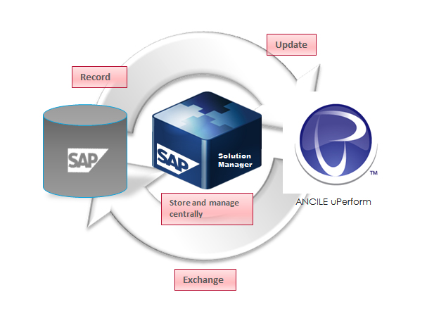 sap solution manager tutorial pdf